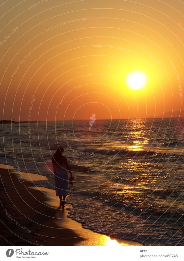 Woman Water Sun Ocean Beach To go for a walk Honeymoon