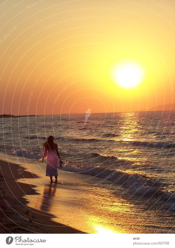 Woman Water Sun Ocean Beach Sunset To go for a walk Honeymoon