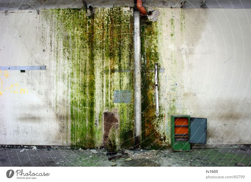 industrial trash Green Wall (building) Trash Rain gutter Algae Damp Dirty Water Industrial Photography