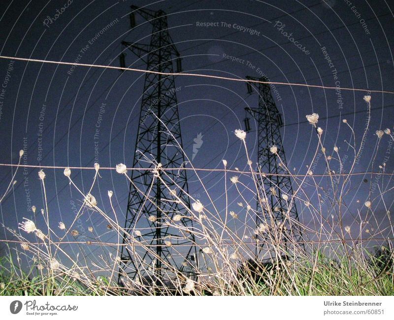Meadow Power Field Electricity Thunder and lightning Upward Tension Electricity pylon Dusk High voltage power line Pasture fence