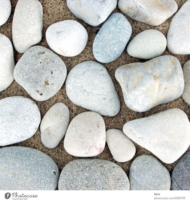 You seek the sea Environment Nature Sand Coast Baltic Sea Stone Lie Stony Flotsam and jetsam Beach Colour photo Deserted