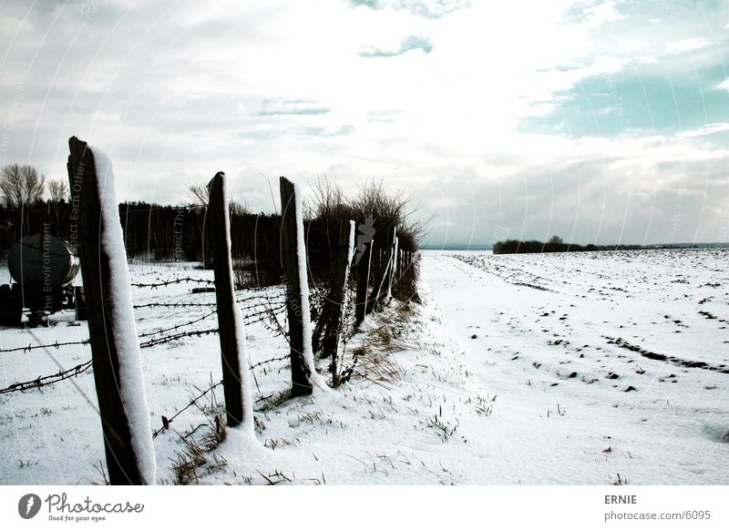 Winter Impression_III Cold Fence Wood White Clouds Tree Snow Sky Pole Contrast Lighting Landscape Nature