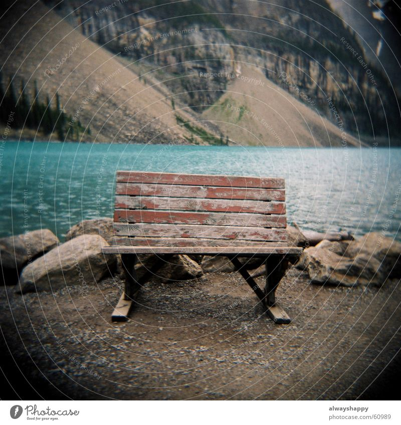 holidays in the sun Go under Dark Mountain lake Lake Hiking Holga Vacation & Travel Green Swindle Sit down Homesickness Gravel Slope Bench Relaxation