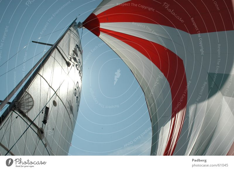 Pure sailing Sailing Aquatics Air Light Adventure sailing on the ijsselmeer gennaker coloured sails high speed Sun good feeling Wind strokes the nose Freedom
