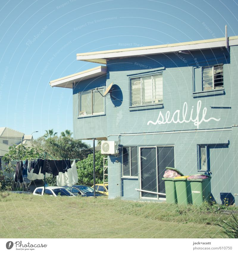 local sealife Environment Cloudless sky Beautiful weather Meadow Queensland House (Residential Structure) Store premises Facade Trash container Cotheshorse