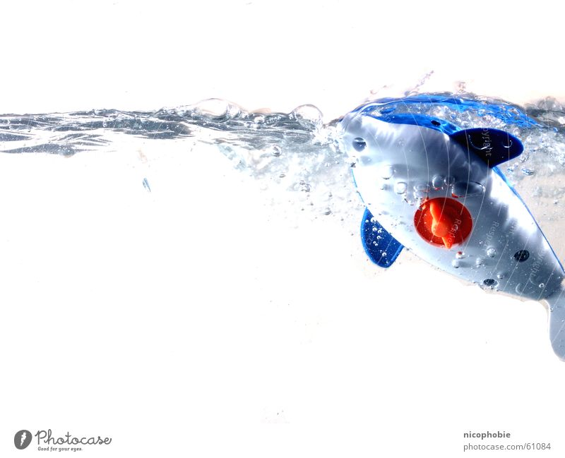 Water Blue Red Joy Jump Playing Fish Dive Toys Gale Aquarium Mammal Water wings Dolphin Whale Emerge