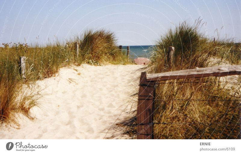Water Sky Sun Beach Vacation & Travel Grass Wood Warmth Sand Waves Physics Umbrella Beach dune Wire Pole