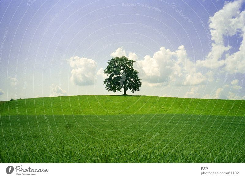 Sky Green Clouds Hill