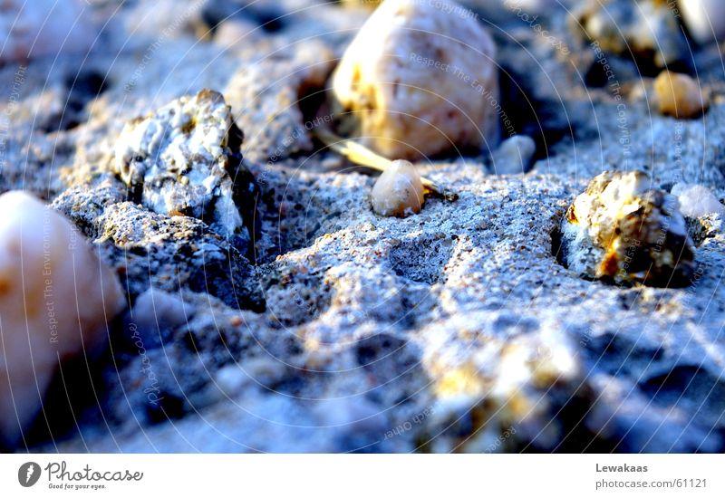 Sun Blue Beach Vacation & Travel Relaxation Stone Sand Graffiti Earth Gloomy Near Floor covering Sparse