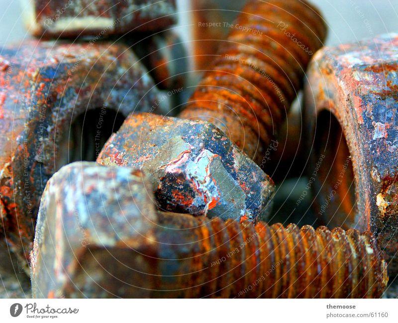 still-life with screw Screw Rust Old