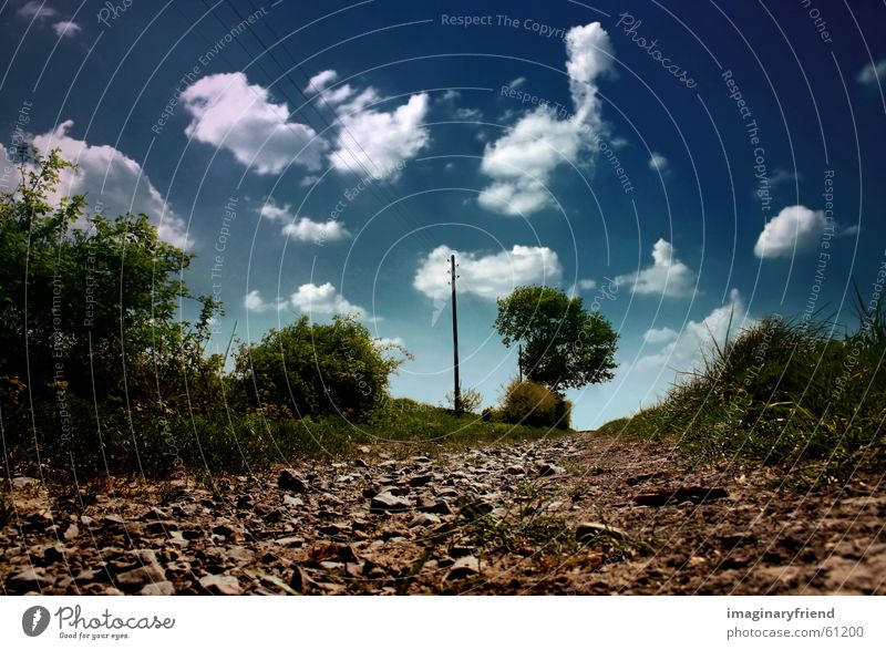 landscape Countries Clouds Tree Electricity pylon Grass Summer Sky country Landscape Lanes & trails