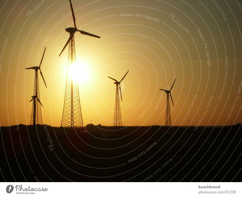energy revolution Sun Energy industry Renewable energy Wind energy plant Sunrise Sunset Warmth Field Hill Syke Germany Europe Small Town Outskirts Skyline Tower