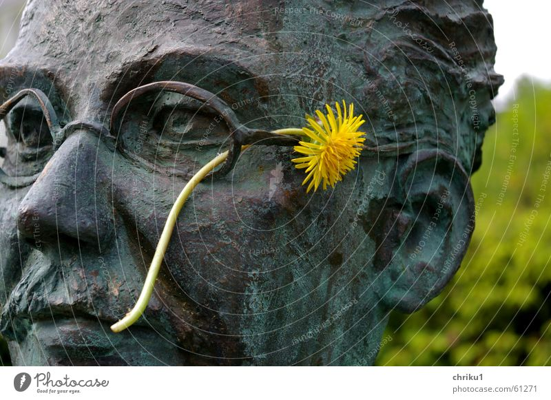 Dr. Dandelion Bust Bronze Eyeglasses Man Moustache Flower Yellow Plant Exterior shot Portrait photograph Motionless Cold Head spa physician Metal Face Ear