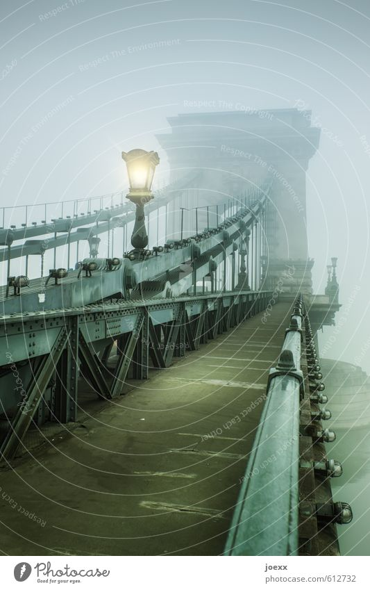 You just have to take life... Autumn Fog Bridge Lanes & trails Old Large Yellow Gray Green Black Colour photo Subdued colour Exterior shot Deserted Day