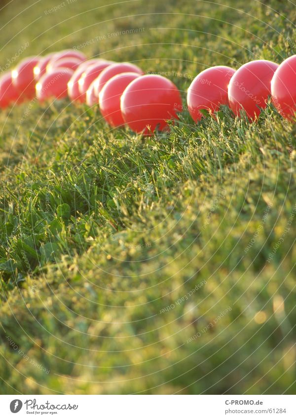 Invasion of the red... Meadow Light Red Green Art Abstract Grass Lawn Ball race to meadow to light to art abstractly to grass balls