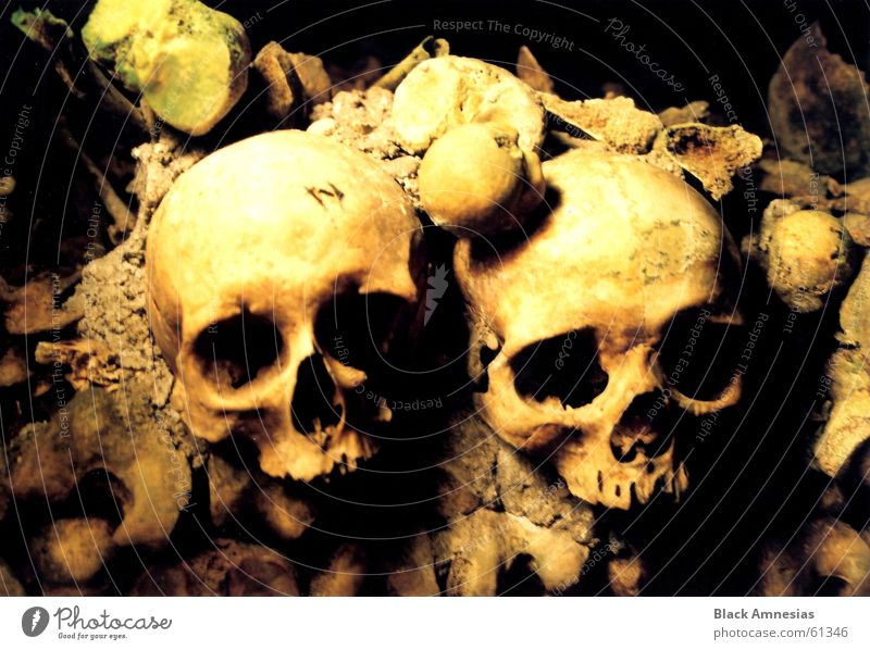 2 Large Might Paris Entrance Skeleton Death's head Grave Cemetery Catacomb Grave chamber