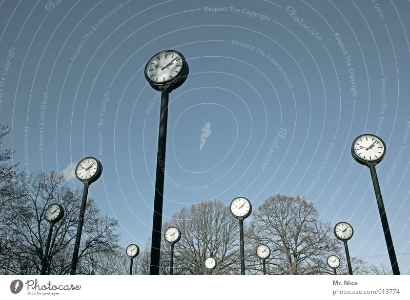 clock forest Environment Sky Cloudless sky Tree Park Large Prompt Art Clock Time 11 Midday Past Present Day Point in time Transience Afternoon