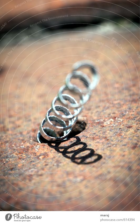 Loneliness Cold Small Exceptional Art Metal Elegant Stand Simple Uniqueness Metalware Thin Firm Metal coil Rust Steel