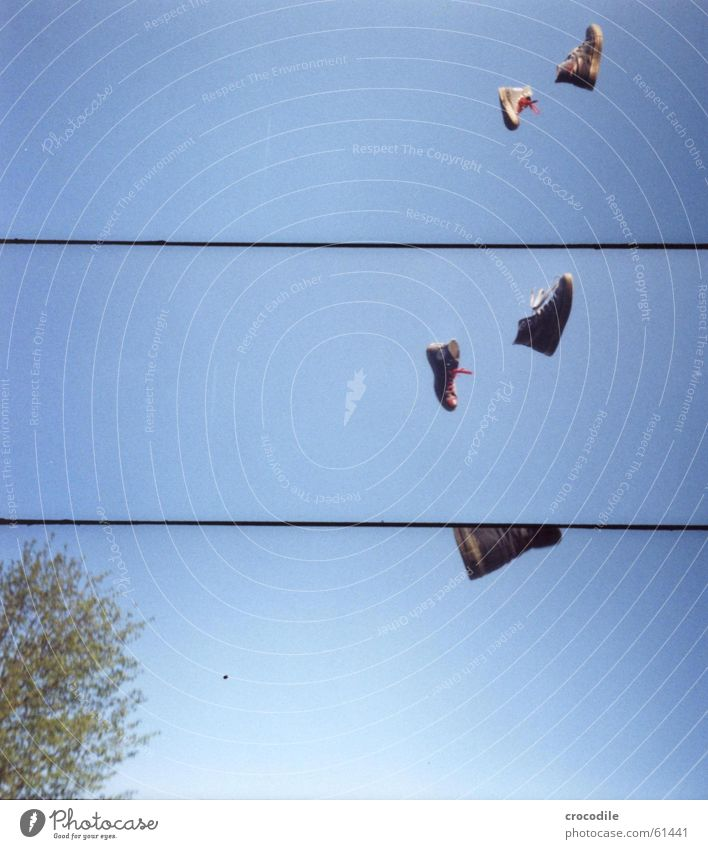 Sky Tree Blue Air Footwear Flying Chucks Sneakers