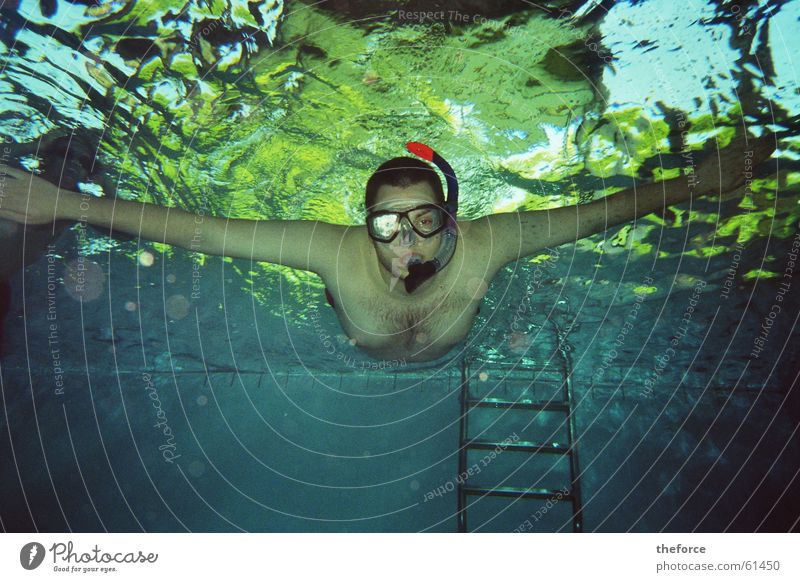 I'm diving! Dive Snorkeling Swimming pool dlg Water Underwater photo Swimming & Bathing