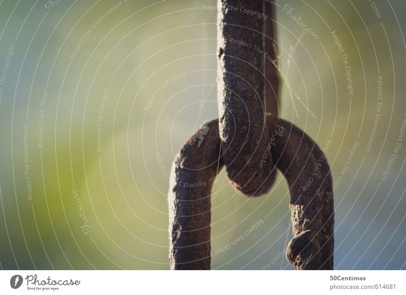chain links Chain Chain link Metal Steel Old Firm Strong Stress Hope Colour photo Exterior shot Close-up Detail