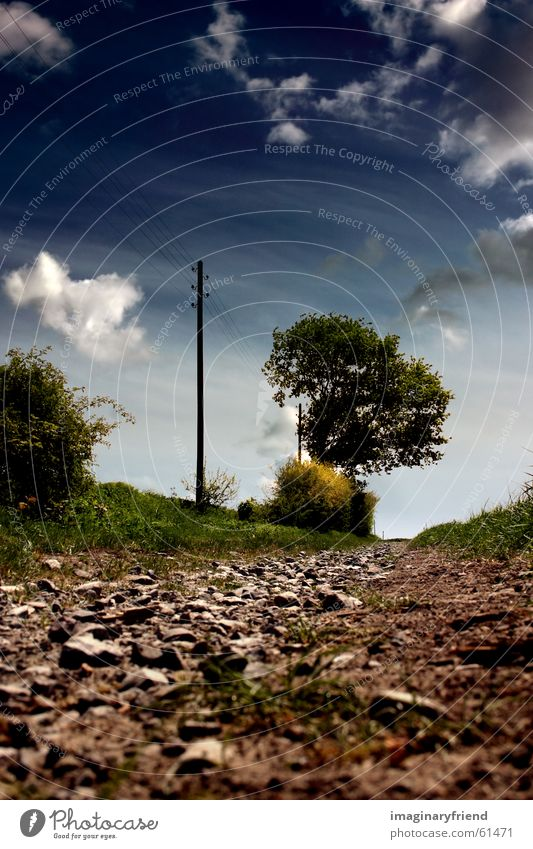 Nature Sky Tree Summer Clouds Meadow Grass Lanes & trails Field Countries Electricity pylon Gravel