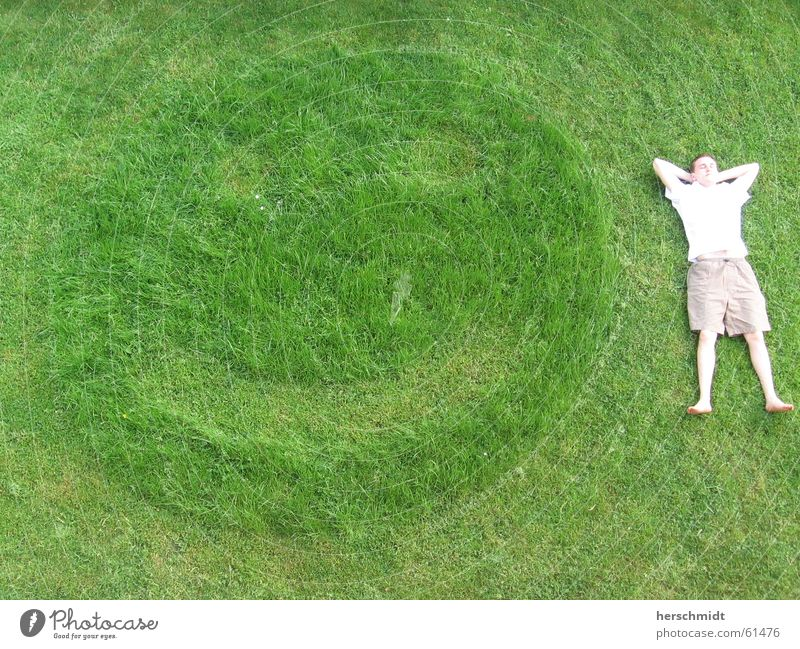 smile Grinning Green Meadow Grass Man Relaxation smily Lie Lawn