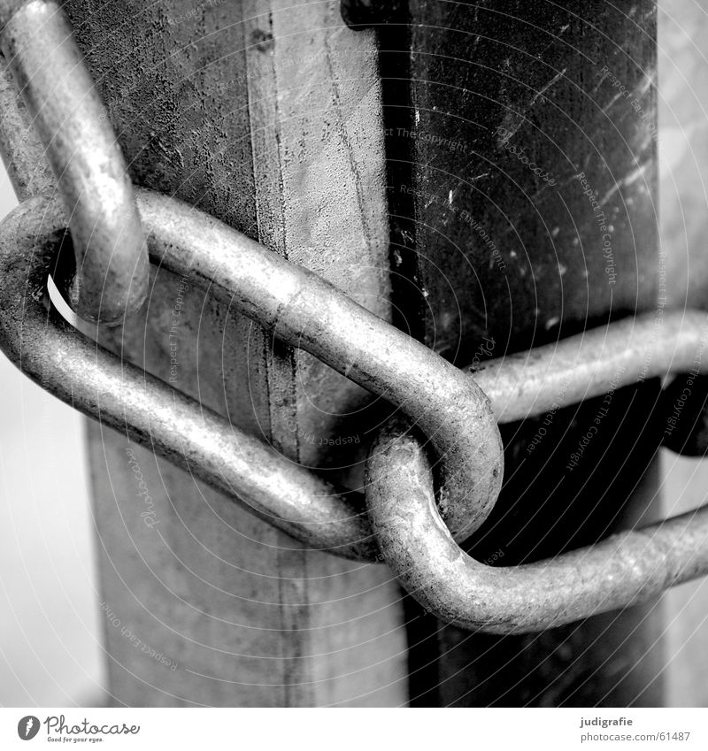 White Black Together Feasts & Celebrations Metal Door Closed Gate Chain Captured Barrier Bans Hold Barred Exclude Chain link