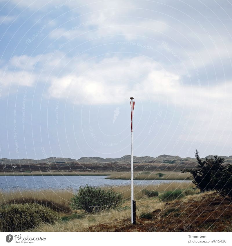 Show your colours! Vacation & Travel Nature Landscape Water Sky Clouds Beautiful weather Grass Bushes North Sea Lake Denmark Flag Flagpole Sand Hang Fresh