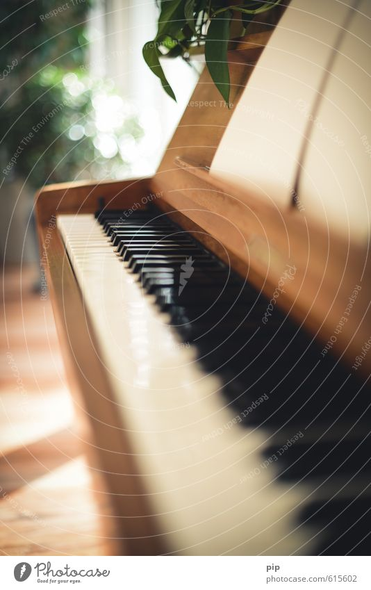 piano crescendo Piano Soft Brown Living or residing Keyboard White Black Musical instrument Blur Make music Keyboard instrument Vanishing point Colour photo