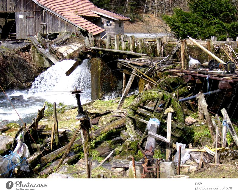 Water Snow Bavaria Wood Bridge River Sudden fall Disaster Museum Waterfall Break-in Snow melt Bavarian Forest