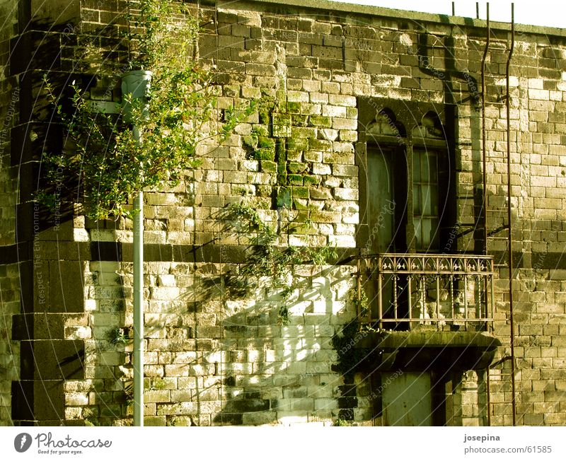 Rain pipe with face Window Balcony Historic Idyll Arrange House (Residential Structure) Shadow Nature Damp Green Undo Close Closed Urinate Tumbledown Building