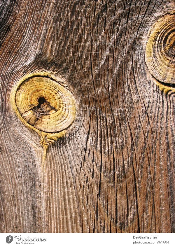 Eyes Wood Line Branch Curve Crack & Rip & Tear Wooden board Wood grain Rough Wood flour Knothole