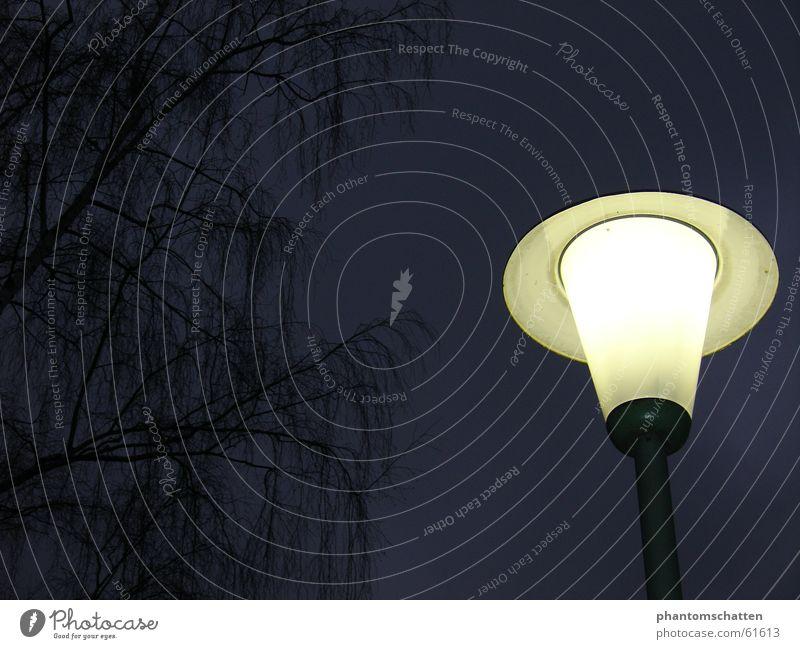Lamp Lantern Twig
