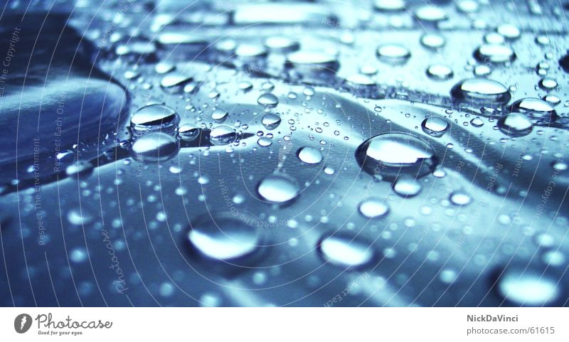 Nature Water Sun Environment Style Rain Weather Elegant Drops of water Uniqueness Wet Rope Tilt Rainwater Seasons Drop