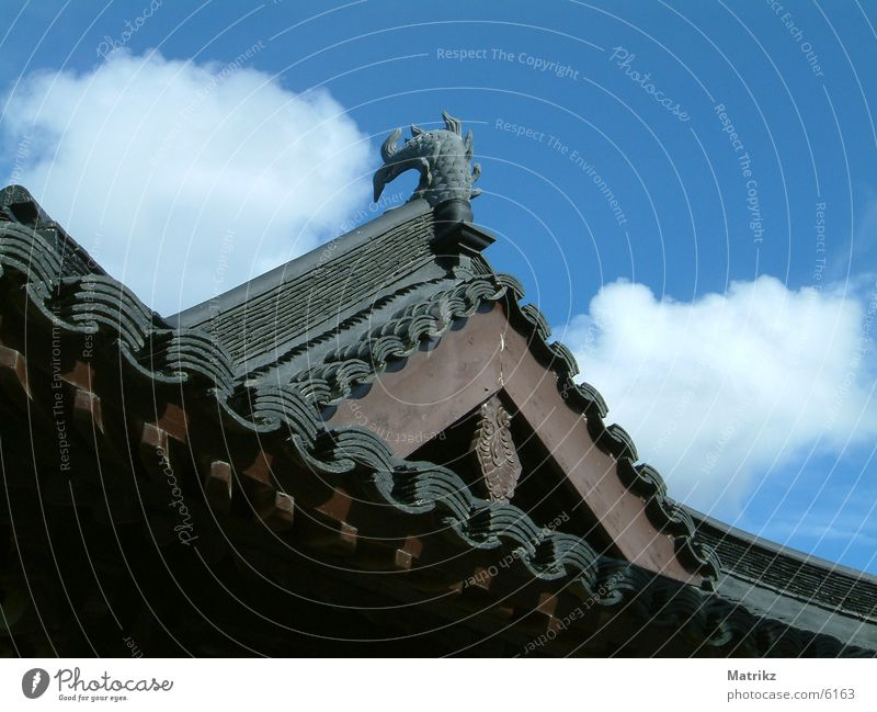 Asian roof Roof Clouds Brown Architecture blue fish