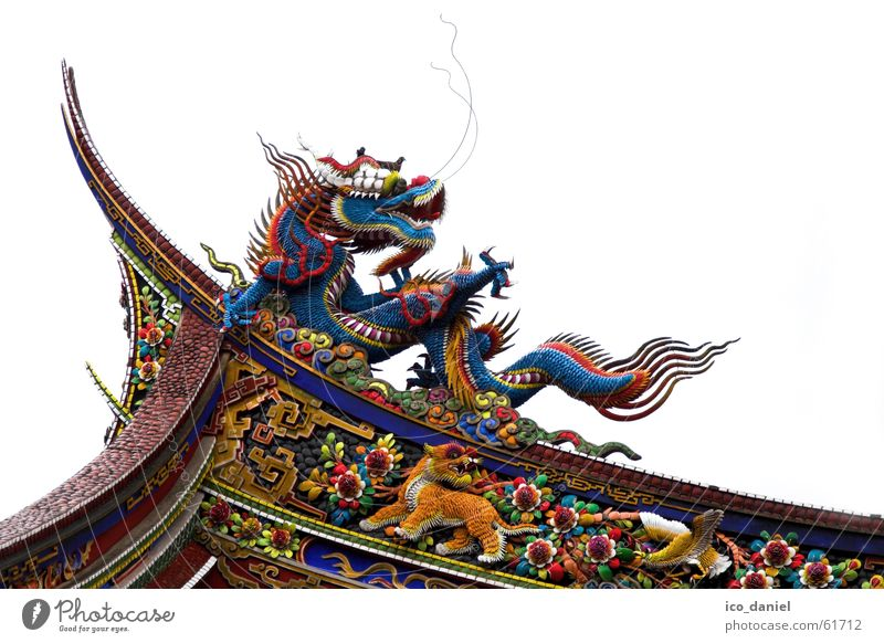 Dragons at Confucius Temple in Taipei I Calm Art China Building Tourist Attraction Wood Old Historic Multicoloured Religion and faith Taiwan Tiger Asia Republic