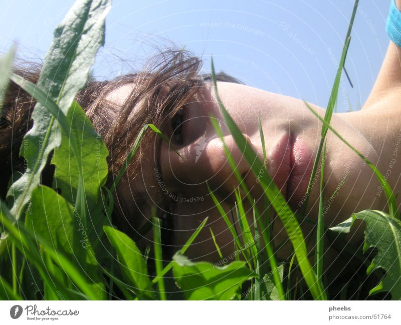 Woman Nature Girl Sky Green Blue Summer Face Leaf Meadow Grass Freedom Hair and hairstyles Free Lawn Lips