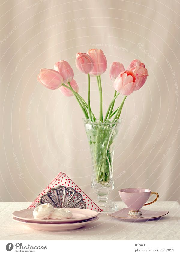 teatime Dough Baked goods Plate Cup Flower Tulip Blossoming Bright Delicious Sweet Pink Teatime Baiser Napkin Vase Bouquet Still Life Colour photo Interior shot