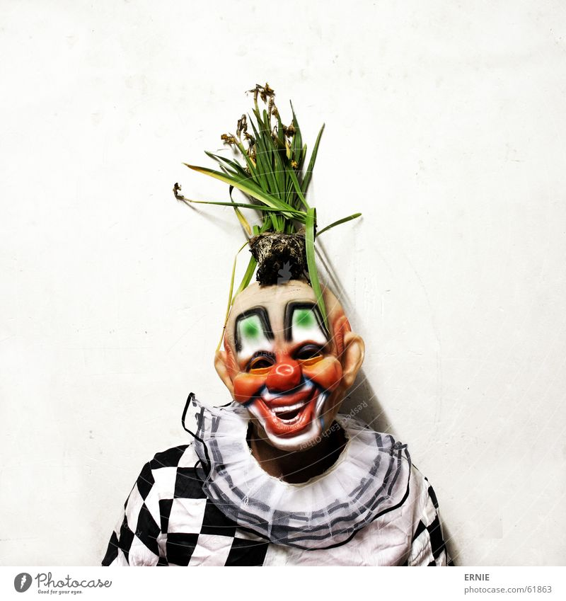 Human being Plant Mask Carnival Profession Freak Clown Checkered Spontaneous