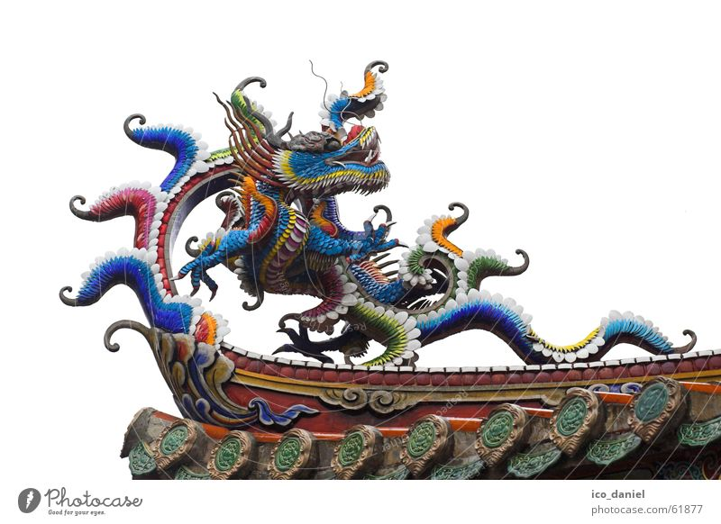 Dragons at Confucius Temple in Taipei II Calm Vacation & Travel Art China Building Tourist Attraction Wood Old Historic Multicoloured Religion and faith Taiwan