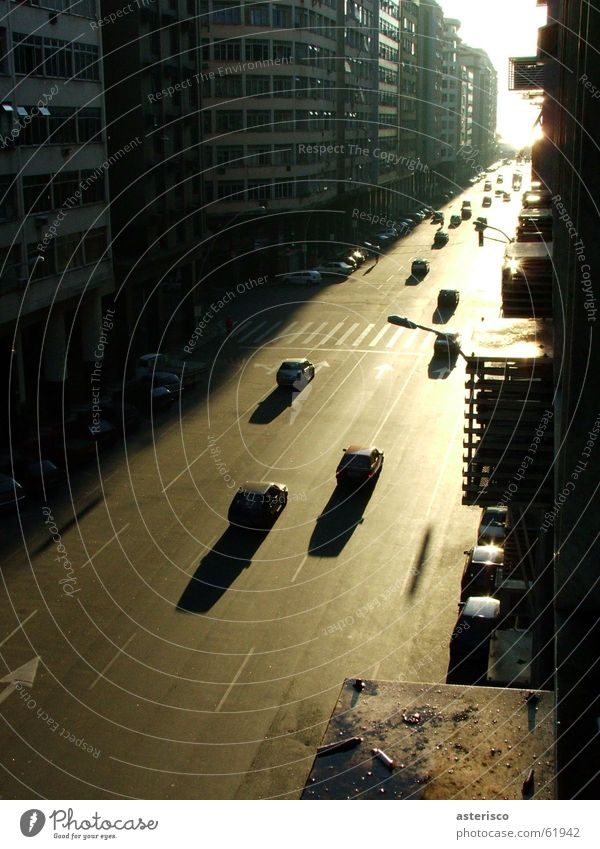 City Asphalt Traffic infrastructure Bus Brazil Passage Signal Rio de Janeiro