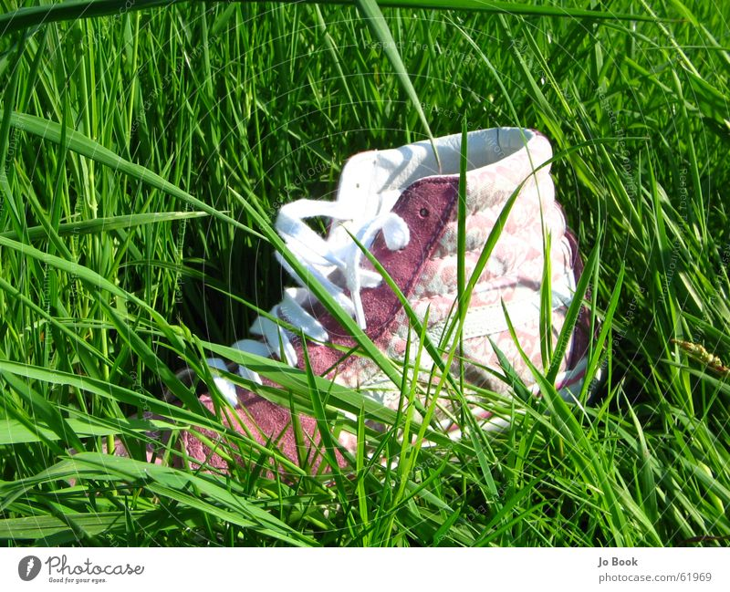 Green Summer Grass Feet Footwear Pink Doomed Shoelace