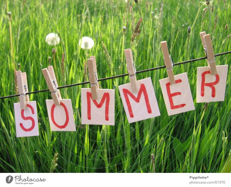 summer Summer Letters (alphabet) Grass Dandelion Clothesline Meadow Seasons Physics Happiness Good mood Beautiful Small Green Hot Light Year Rope To hold on