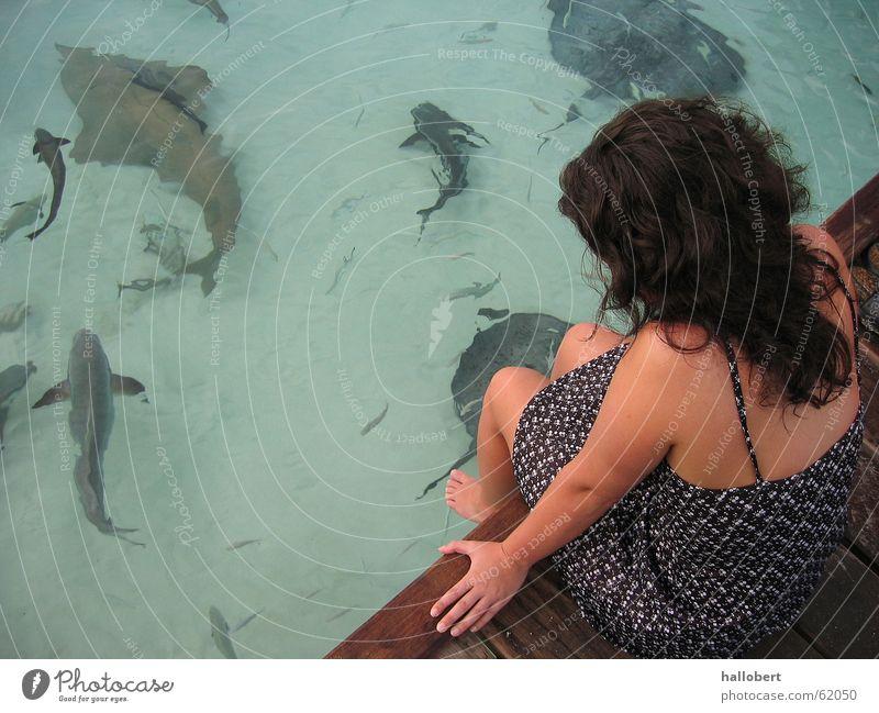 Woman Water Ocean Beach Vacation & Travel Coast Fish Footbridge Maldives Shark