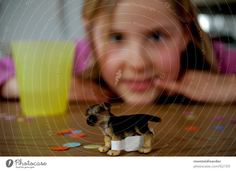 Blur and ... Child Girl Dog Playing Toys Table Confetti Wood Fingers Hand Stand Mug Pelt Things Looking Animal Paw Wood flour Vantage point Face Ear Eyes Mouth