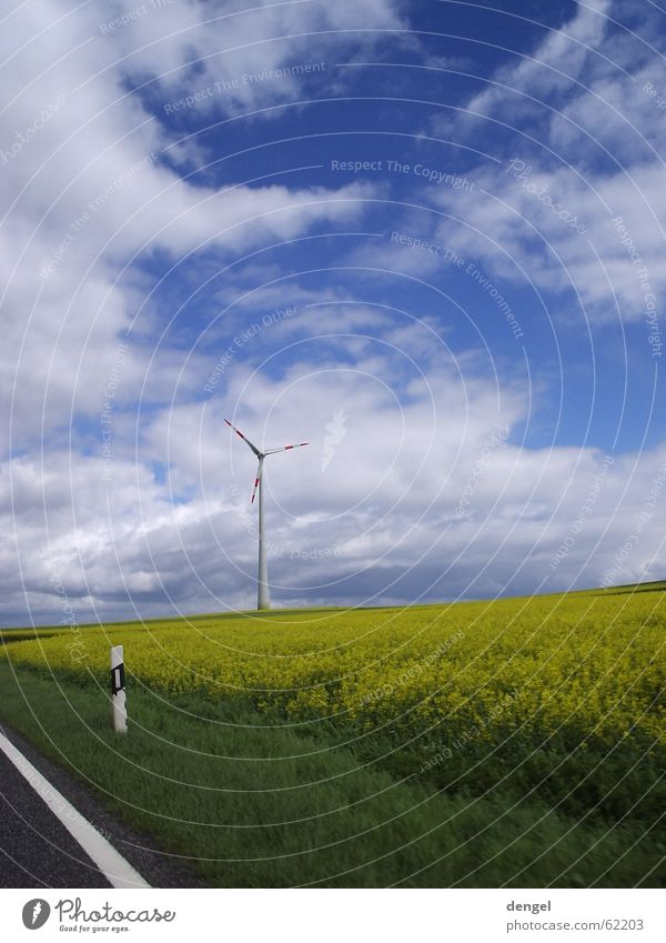 Nature Sky White Green Blue Red Joy Vacation & Travel Clouds Yellow Street Colour Grass Spring Freedom Lanes & trails