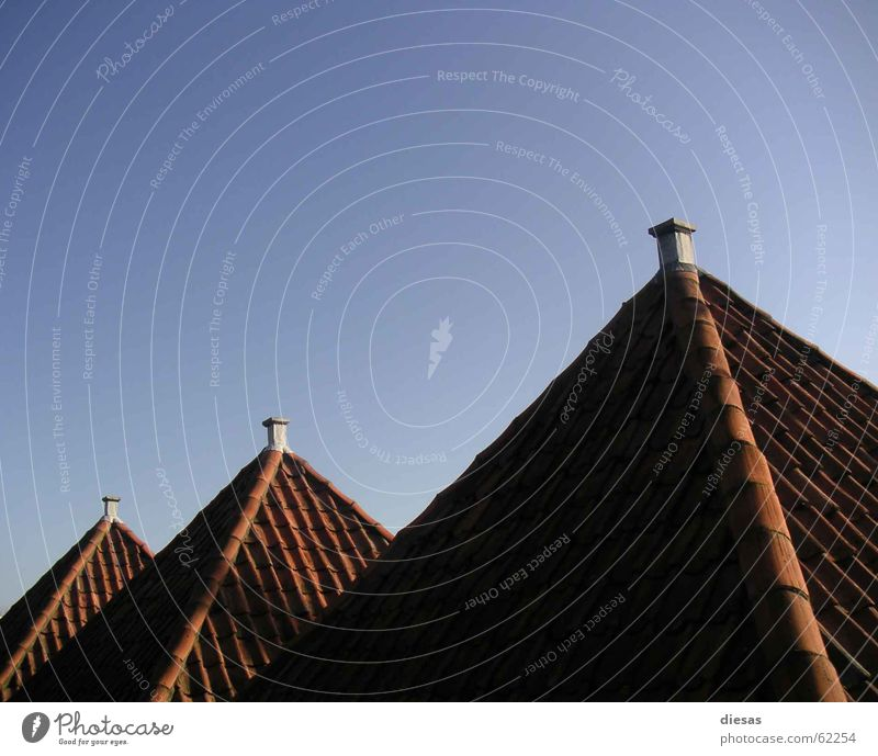 Pyramids of Holland House (Residential Structure) Roof Roofing tile Red Evening sun Row Chimney Architecture