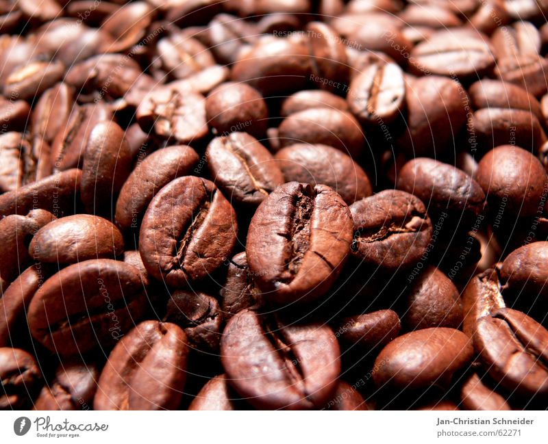 Ka-bo Village Beans Café Delicious Cup Macro (Extreme close-up) Mince Gastronomy Hot Physics Africa coffee beans milky coffee back Warmth Baun