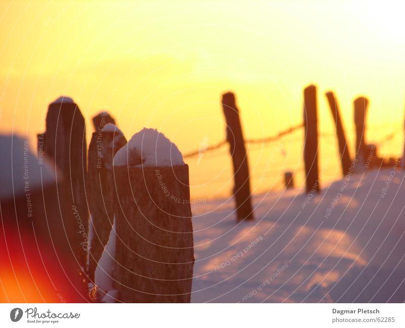 Snow Moody Fence Sun Winter sun